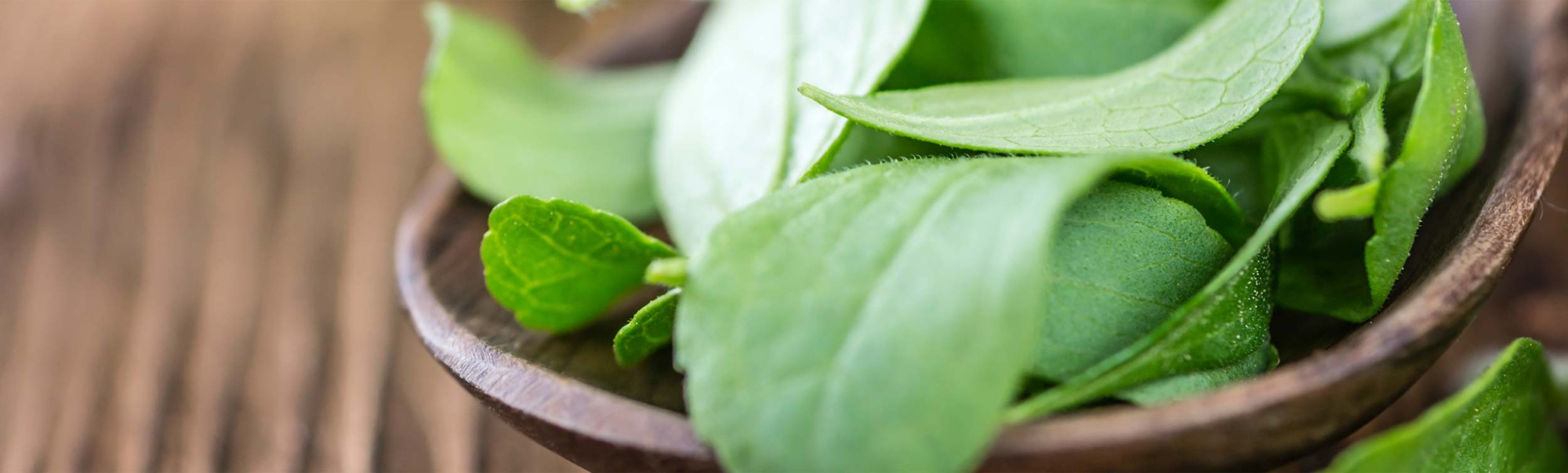 A little about stevia.